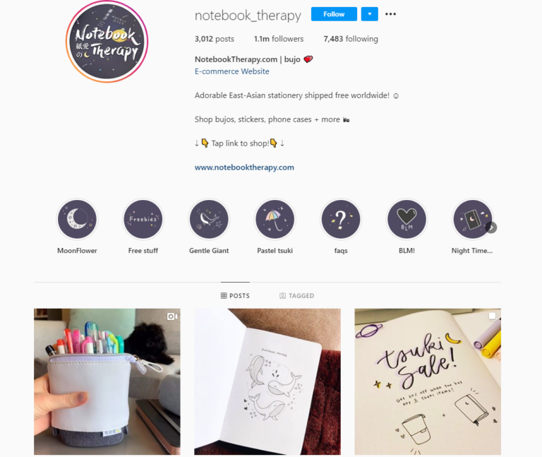 dropshipping-instagram-account-example-notebooktherapy